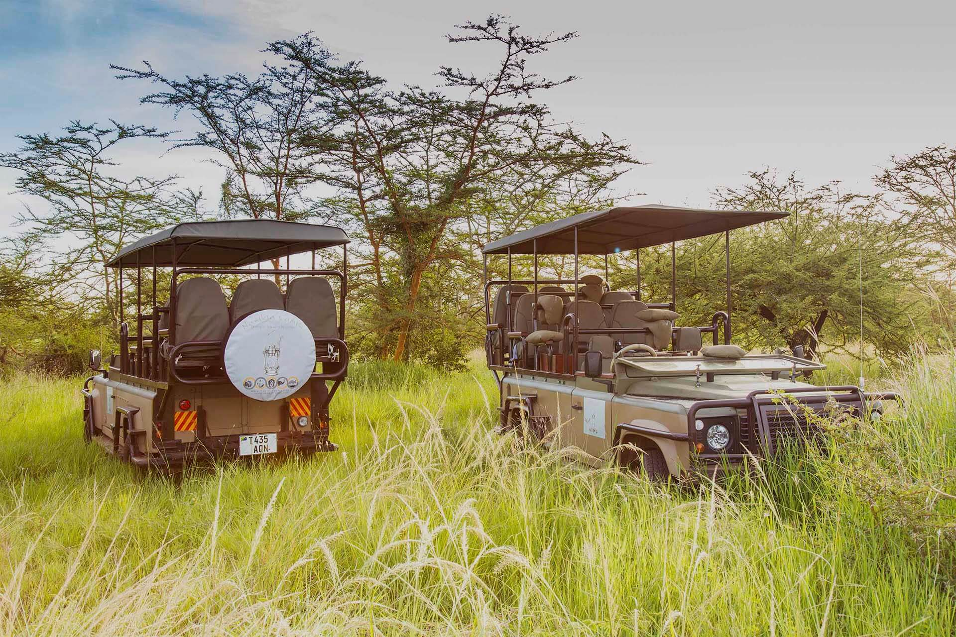 nasikia-camps-guided-serengeti-safari-package-africa