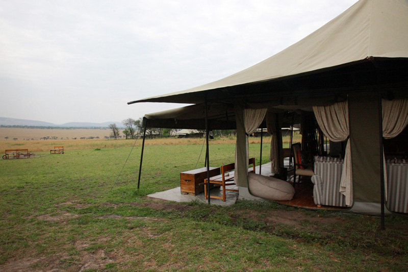 media-articles-blog-posts-wildebeest-nasikia-camps-game-drives-tours-tanzania-safaris-africa-Serengeti-Ad-SLOW-November-2018